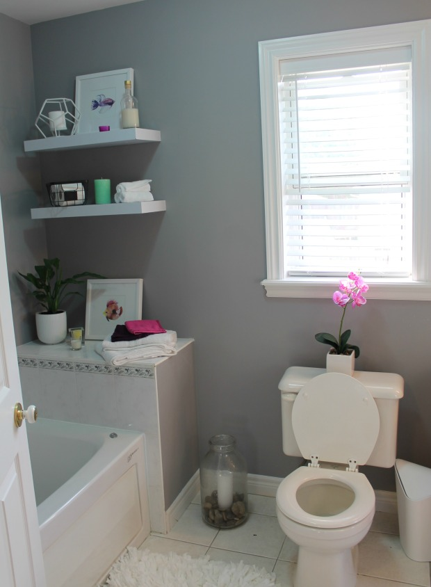 Shelf and Toilet area