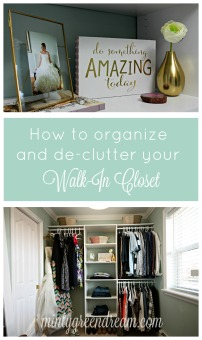 https://mintygreendream.com/2016/04/03/the-master-closet-lets-get-organized/